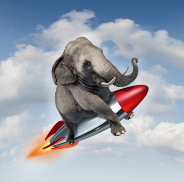 shutterstock_127926530_Elephant_on_rocket